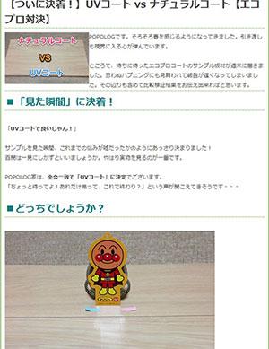 Pakuri blog 1